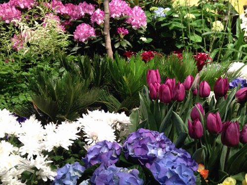 Flower Show in Amsterdam http://www.flair-magazin.de/reise/artikel/macys-flower-show-in-new-york.html