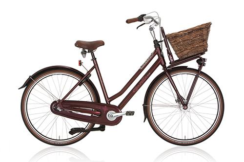 Stadtradler aus Wien!
