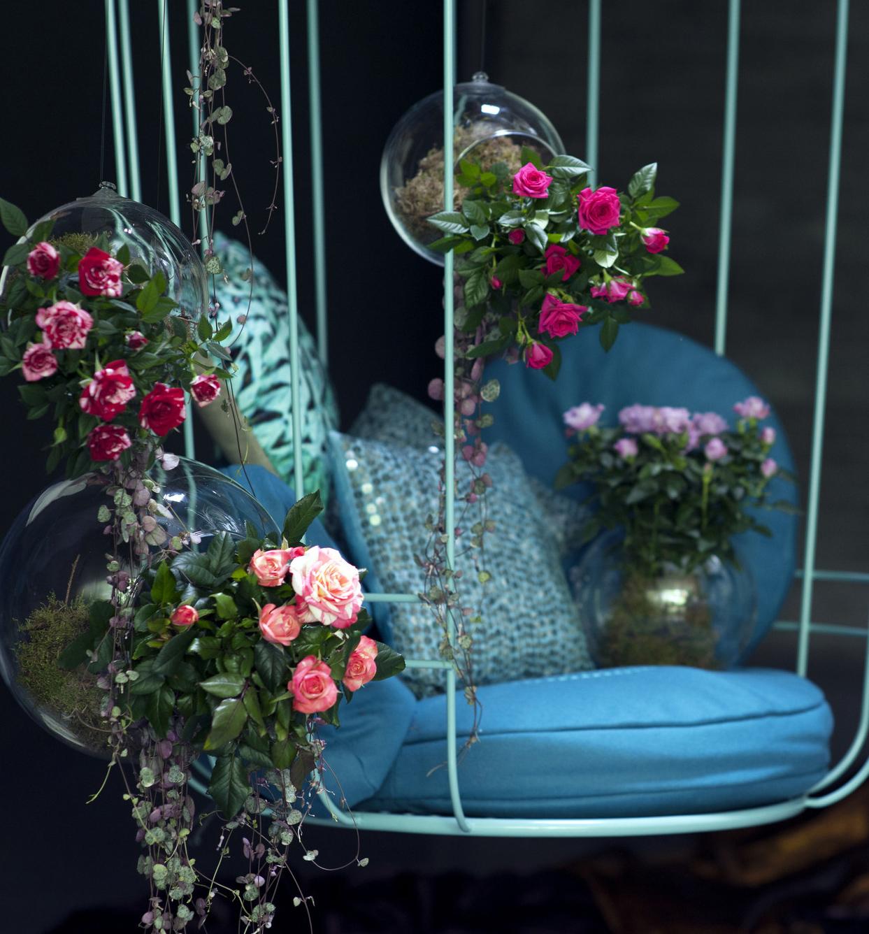 tag des gartens in k ln flair fashion home. Black Bedroom Furniture Sets. Home Design Ideas
